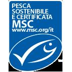 monti-msc-143